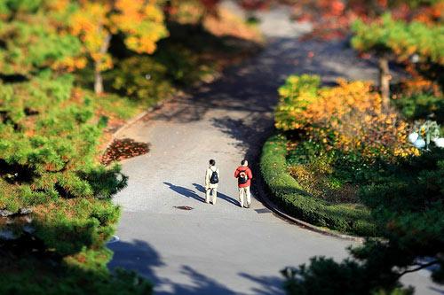 Miniature Garden by pinboke_planet